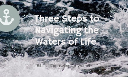 Three Steps to Navigating the Waters of Life