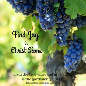 Find Joy in Christ Alone