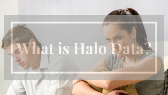 What is Halo Data?